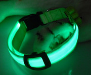 top quality hot selling led dog collar