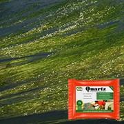 Blanket Weed & String Algae Treatment - Hydra Quartz
