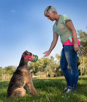 Buy Best Puppy Muzzle for Your Pet