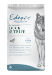 Healthy Pet Foods that Your Pets Would Love